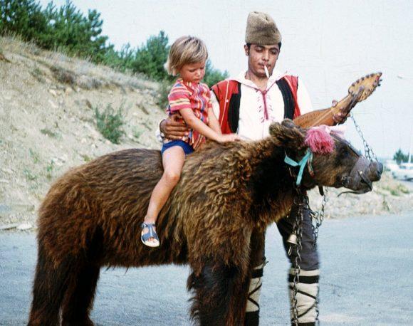prima di finire nel parco degli orsi danzanti questi animali venivano usati per foto ricordo con turisti